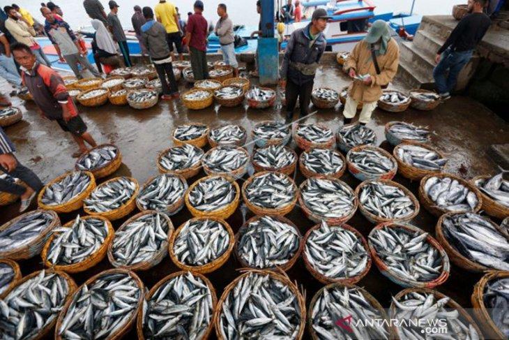 Tahun ini, Sabang targetkan 7 ribu ton produksi ikan
