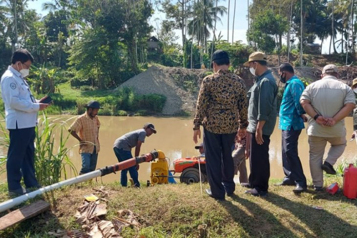 Ratusan hektare sawah di Aceh Besar alami kekeringan