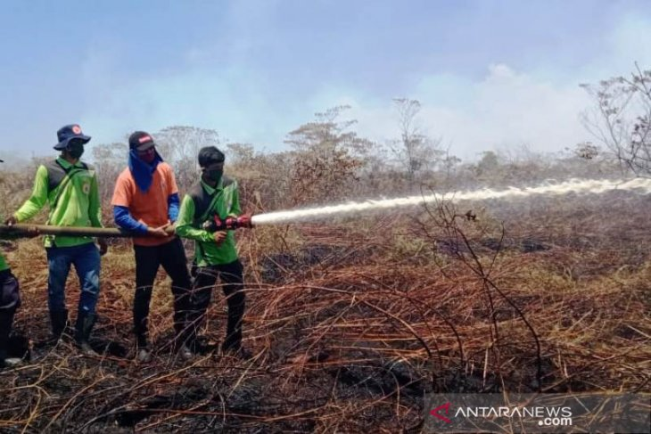 Luas lahan gambut terbakar di Nagan Raya mencapai enam hektare