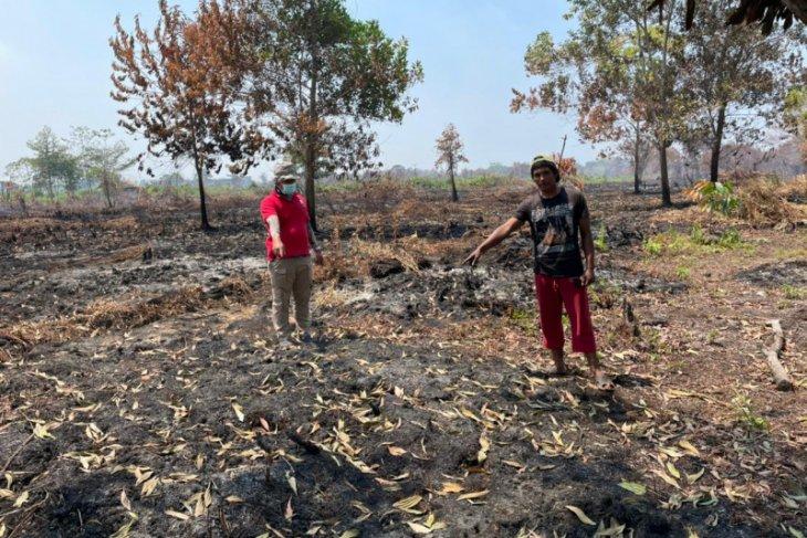 Seorang pembakar lahan di Pontianak ditangkap