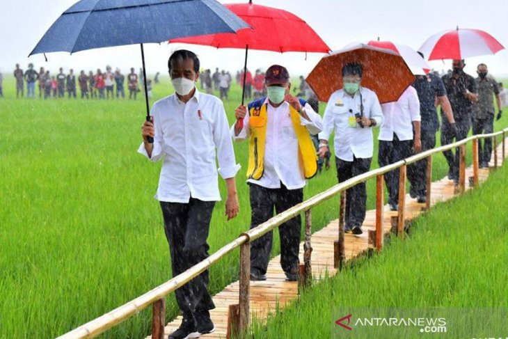 Ministry develops sustainable food estate to maintain security
