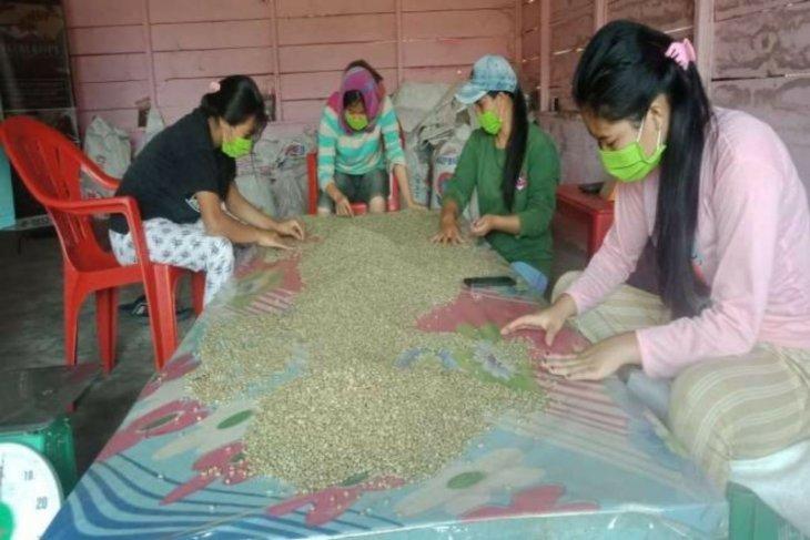 Kopi produk UKM Fitri Coffee asal Karo mulai diminati Mesir