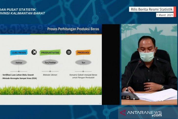 Produksi padi tahun 2020 di Kalbar 778,17 ribu ton GKG