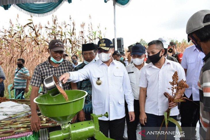 Nilai tukar petani Bangka Belitung naik 0,93 persen