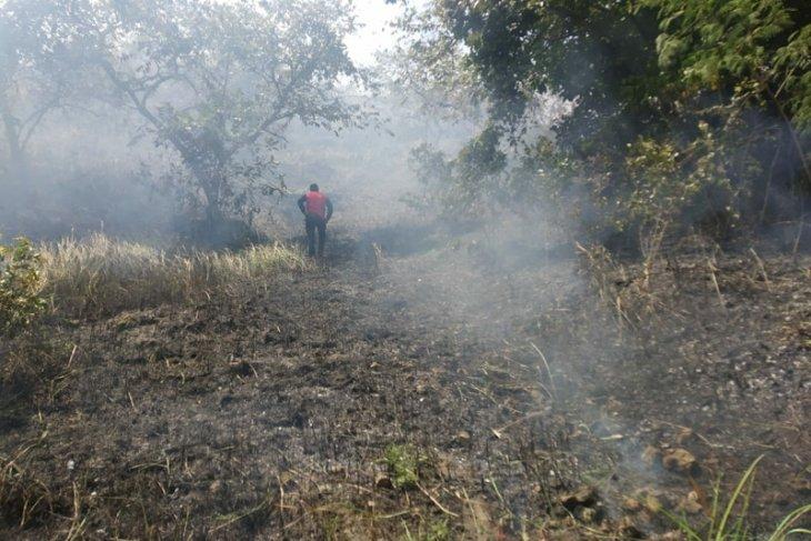 1,5 hektare lahan ilalang terbakar di Lhokseumawe