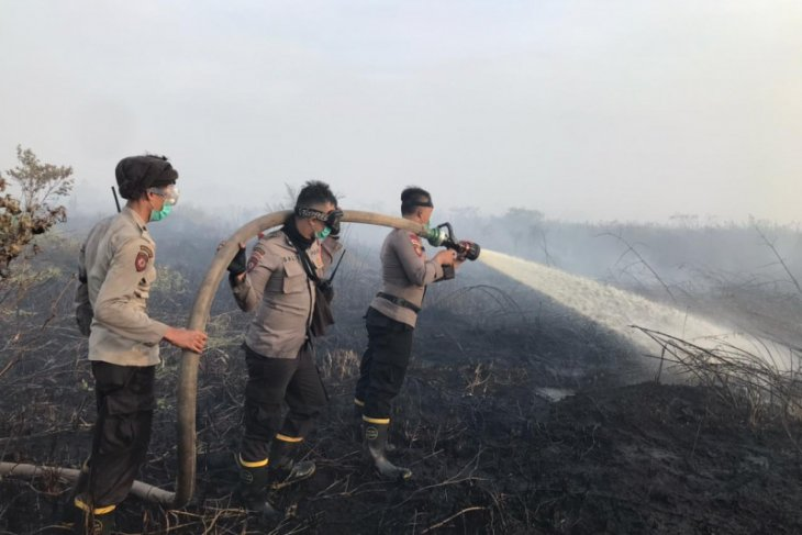 West Kalimantan police name eight suspects in forest, land fires