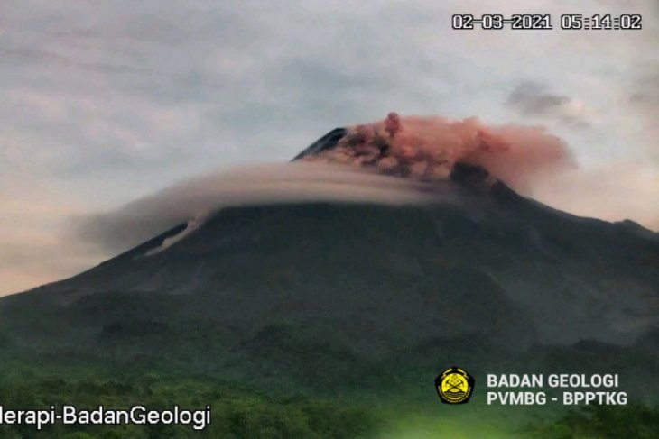 Hot clouds billowing from erupting Mount Merapi spread 1.9 kilometers