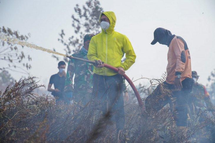 40 hektare lahan gambut di Kota Pontianak terbakar