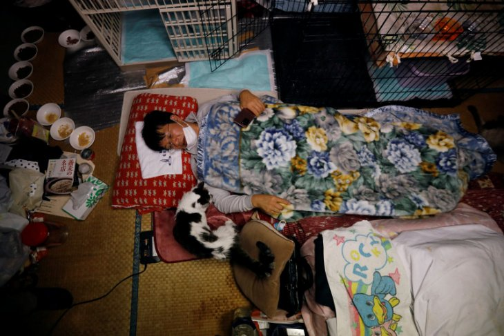 Pria ini selamatkan kucing terlupakan di zona nuklir Fukushima