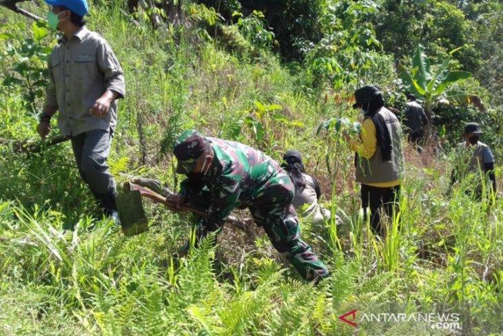 Revolusi hijau di Pegunungan Meratus