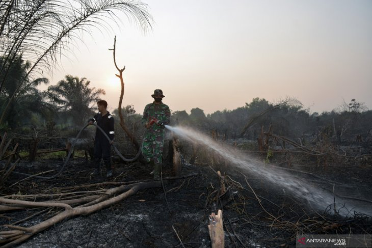 BMKG forecasts potential forest, land fires after  transition season