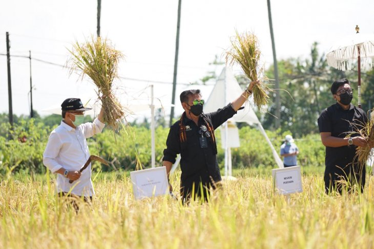 Minister calls regions across Indonesia to promote agrotourism