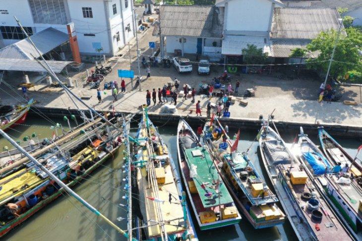 KKP: Fungsi syahbandar di pelabuhan perikanan diperkuat