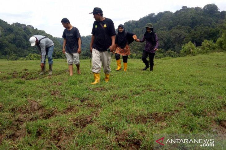 BKSDA gelar aksi usir harimau yang memangsa ternak warga