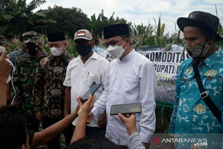Bupati Bangka Tengah ingin Kecamatan Lubuk Besar jadi sentra pertanian
