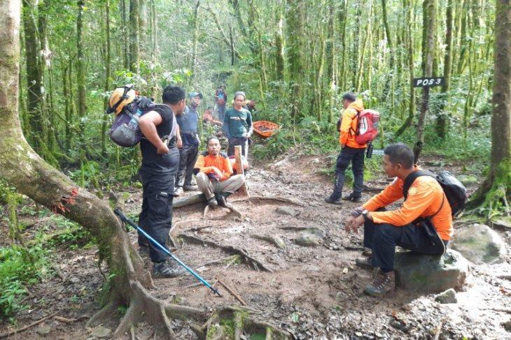 Basarnas kerahkan tim evakuasi pendaki terjatuh ke jurang