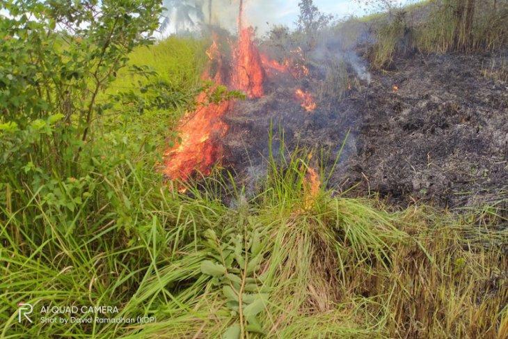 Kebakaran lahan panikan warga Lhokseumawe