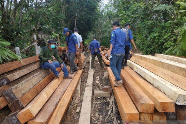 KPH minta pelaku ilegal logging di Kapuas Hulu ada kepastian hukum