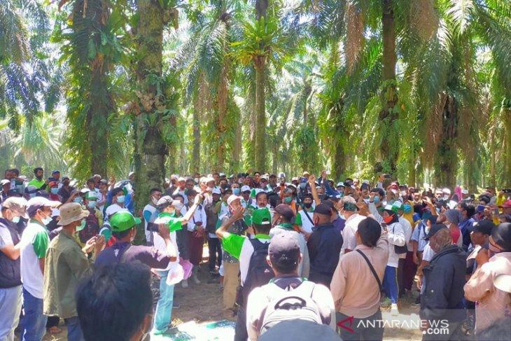 Ratusan warga duduki lahan PT Agri Andalas di Seluma