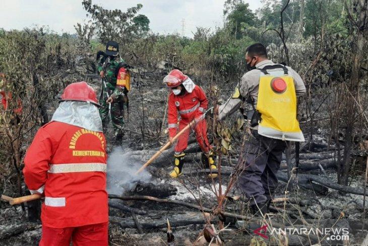 Satgas Karhutla Jambi ajukan bantuan helikopter