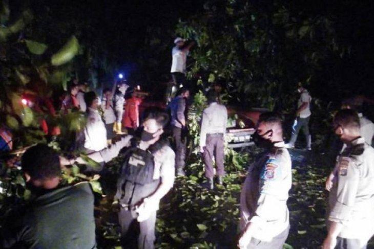 Satu unit mobil tertimpa pohon di lokasi longsor Jalinsum Sibolga-Tarutung