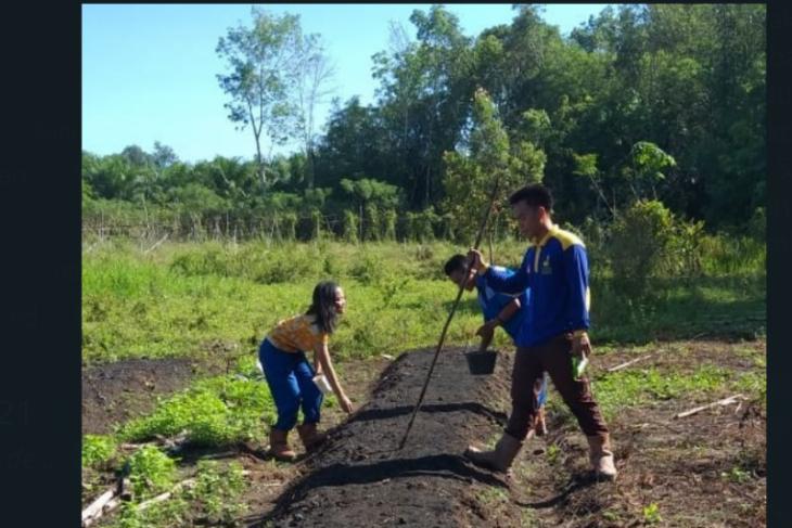 CITA ajak siswa SMK magang di kebun masyarakat binaan