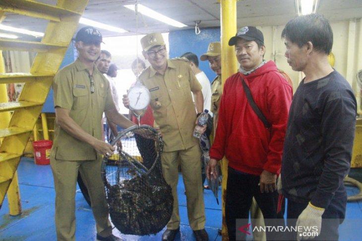 Ekspor ikan kerapu dari Belitung ke Hong Kong capai 24 ton