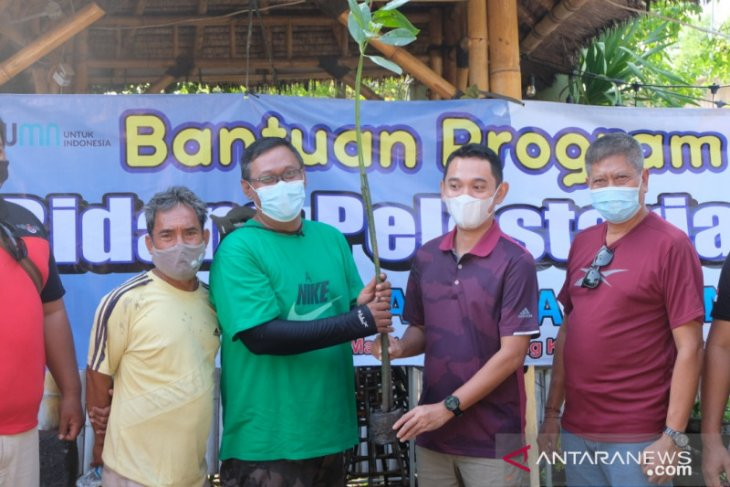 Jasa Raharja Bali dukung penanaman 1.000 mangrove