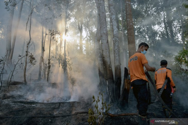 Riau dapat bantuan 3  heli dan 2 pesawat untuk penanggulangan karhutla