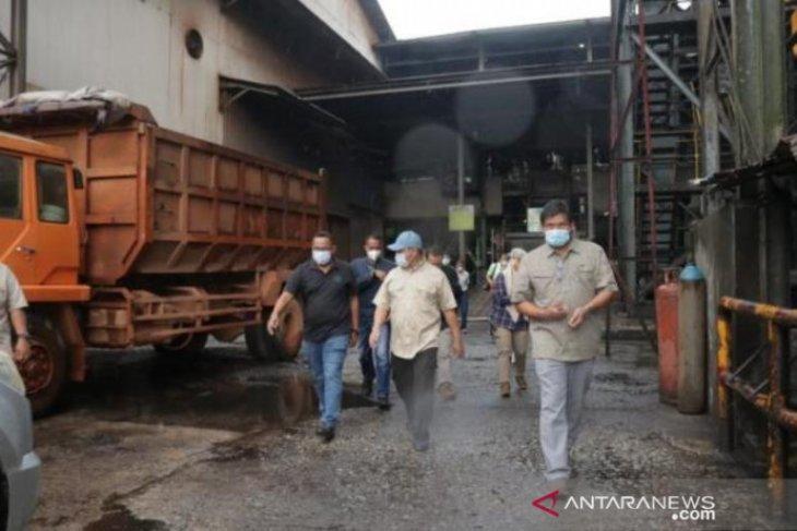 Bangka Belitung gandeng perusahaan sawit tingkatkan pakan sapi