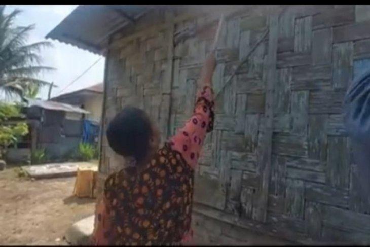 Ribuan ulat bulu serang rumah warga di Tebing Tinggi