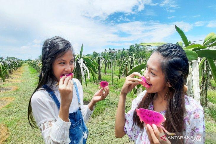 Amanah Borneo Park, wahana penuh edukasi manjakan liburan keluarga