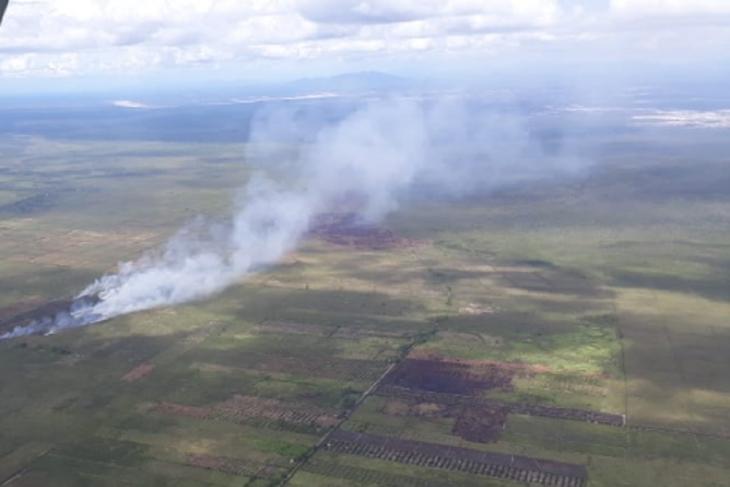 Lahan yang terbakar di Kabupaten Ketapang