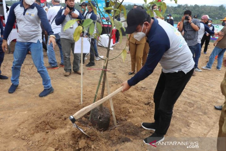 Buleleng tanam 300 pohon di Bendungan Tamblang pada Hari Air Dunia