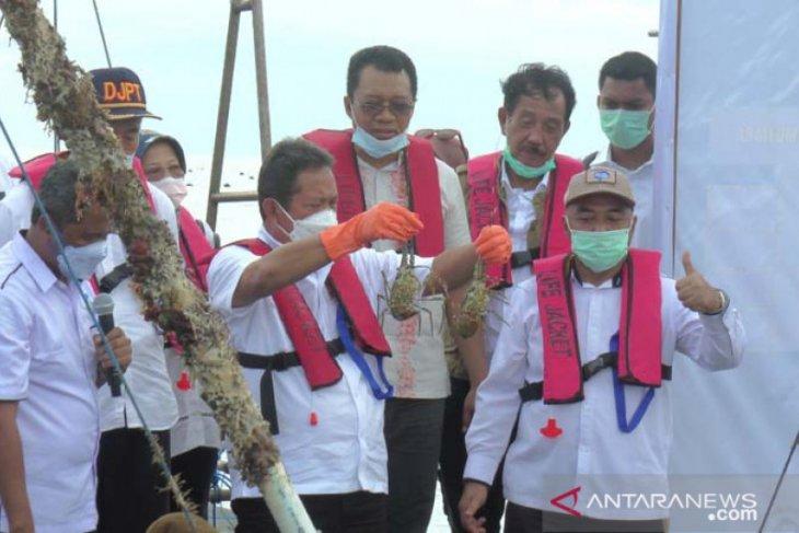 Menteri Trenggono akan jadikan Indonesia pembudidaya lobster terbaik