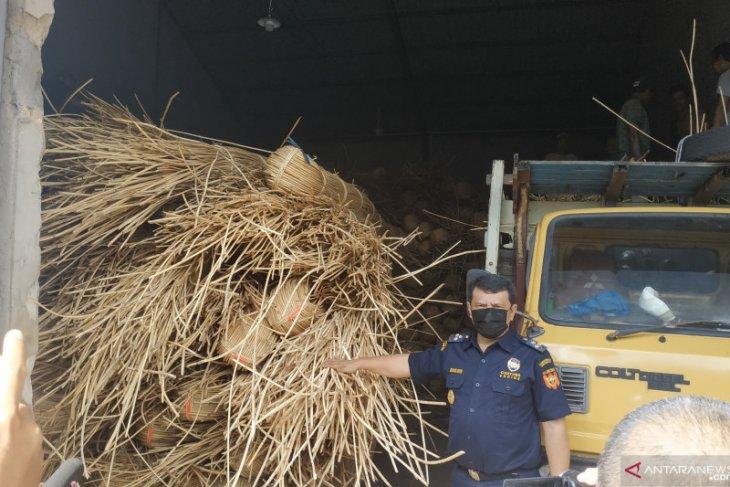 Bea Cukai gagalkan penyelundupan 100 ton rotan ilegal di perairan Kalbar