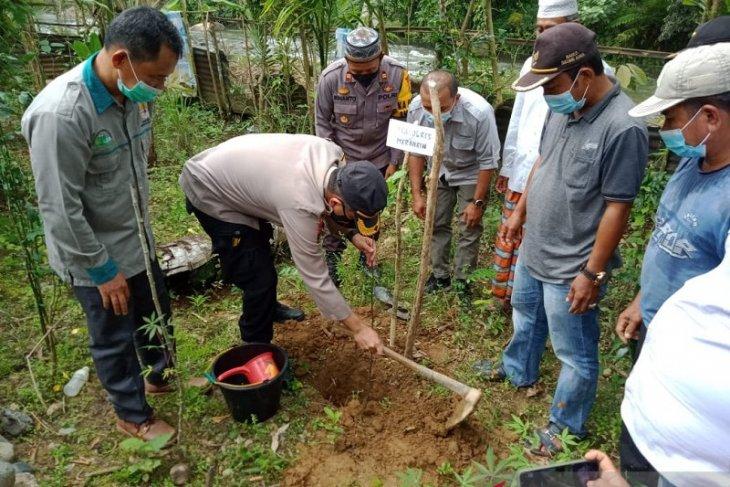 Polres Merangin  bersama warga tanam bibit tanaman produktif dibekas lokasi Peti