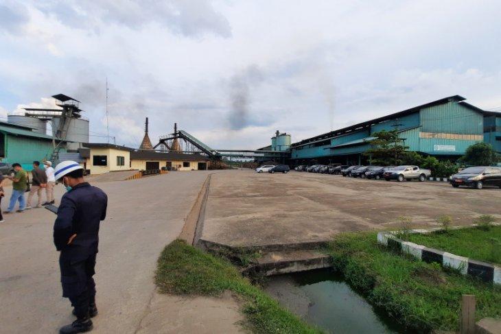 Harga CPO di Jambi tembus Rp10.000 per kilogram