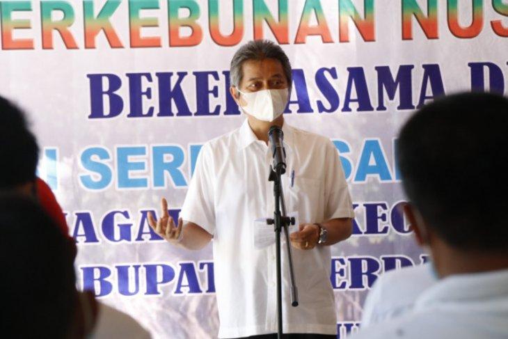PTPN IV Menanam Mangrove, bantu perekonomian masyarakat pesisir pantai