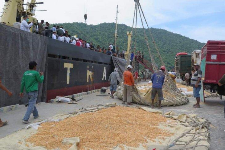 PT SIP ingin investasi pengembangan jagung di Gorontalo