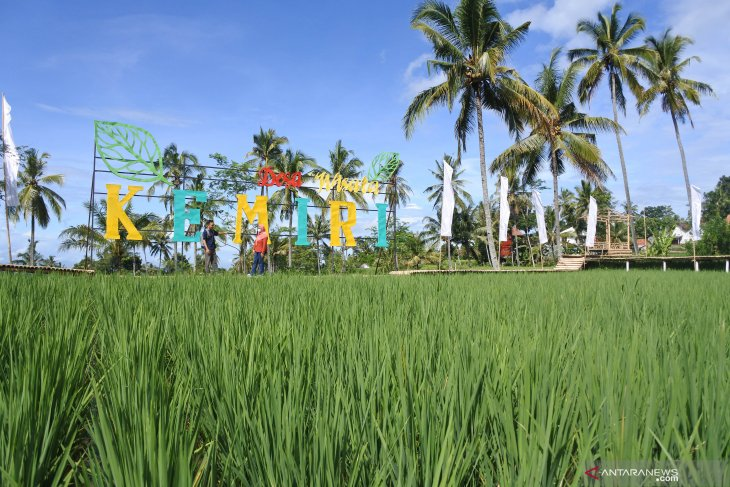 Desa Wisata Kemiri Jember