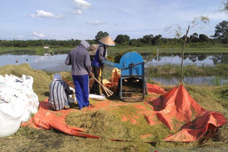 Bulog Jambi menyerap 3.300 ton beras petani hingga Maret
