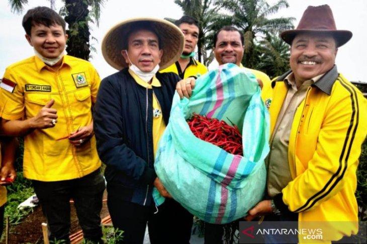 TRK kembangkan tanaman cabai di areal 20 hektare