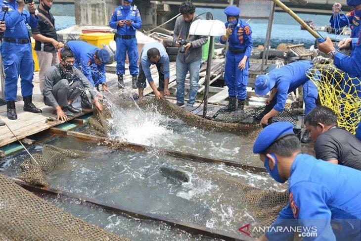 Aceh Tamiang kembangkan budi daya perikanan darat
