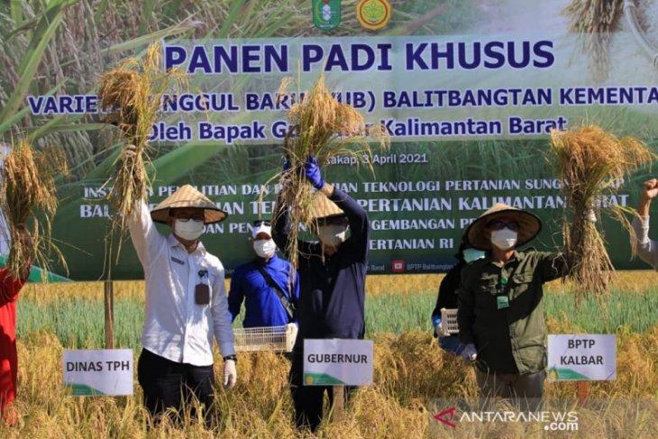 Gubernur minta bantuan Balitbangtan kembangkan padi varietas unggul baru