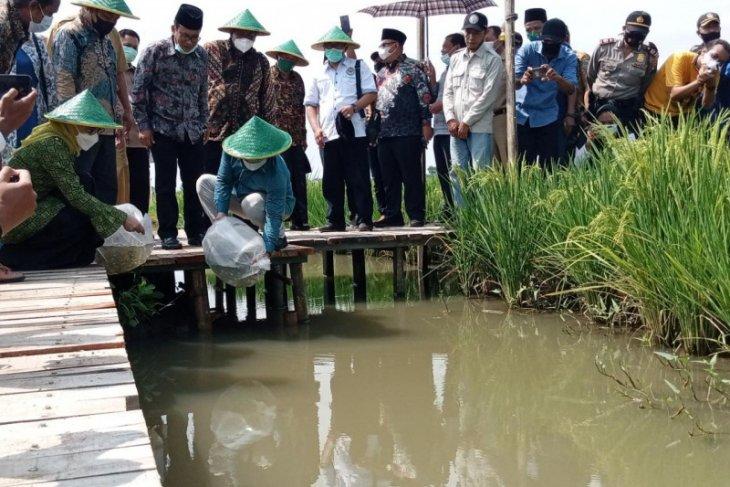 Wakil Ketua DPR RI Gus Ami apresiasi wisata rintisan desa di Tulungagung