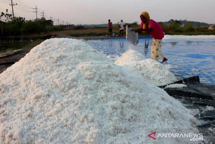 Jatim upayakan garam impor tidak untuk konsumsi