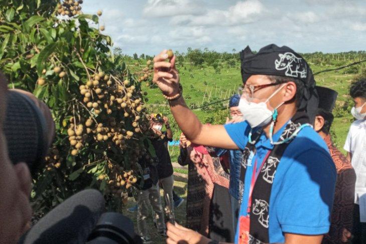 Menparekraf Sandiaga Uno dorong pariwisata era baru berbasis alam terbuka