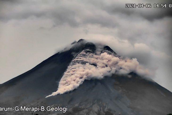 Awan panas guguran gunung Merapi muncrat sejauh 1,5 km