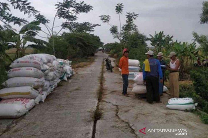 Harga gabah di di tingkat petani Bekasi anjlok akibat banjir